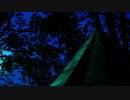 癒し系自然音『テントで聴く雨音』睡眠・リラックス・作業用BGM ASMR