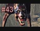 Bloodborne 最高難易度7周目 本編&DLC全ボス撃破 全ED制覇 実況プレイ #43