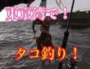 東京湾でタコが爆釣!と聞いて行ってみたら〇〇が釣れたw【...