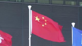 五星紅旗を守る活動、ネット上で熱烈な反響