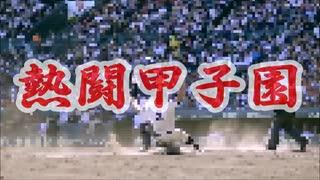 [高校野球] 西東京代表、國學院久我山甲子