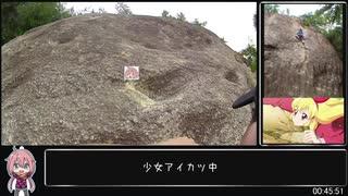 【低山要素詰め合わせ】ゆるふわ六甲山 猫カフェ来店リアル登山アタック【番外編】02:39:34