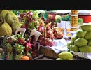 【ベトナム旅行記・Vietnam Travel】ホーチミンのベンタイン市場で買物&サイゴン大聖堂付近をまったり観光というか、散歩【VLOG】
