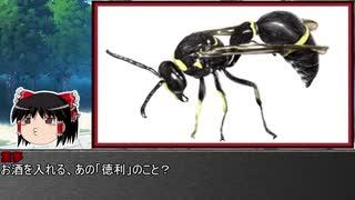 ゆっくり霊夢とやる夫が学ぶ 昆虫大百科 part29