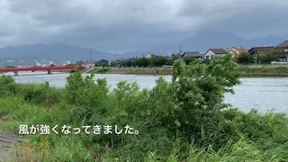 台風10号 8月15日午前11時ごろの様子とねこ