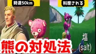 【Fortnite】熊がでた時の対処法【フォー