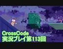 広大な世界を冒険しよう! CrossCode実況プレイpart113