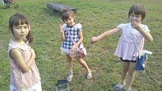 池でザリガニがいたよ! すごい、小さな網ですくえた。カエルさんもいたよ。