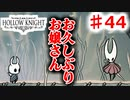 【Hollow Knight】虫嫌いのホロウなナイト#44