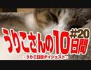 うりこさんの10日間 - 2019#20