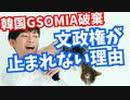 GSOMIA破棄【韓国の文政権が止まれない】本当の理由