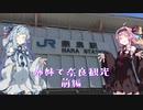 姉妹で奈良観光