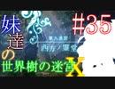【世界樹の迷宮X】妹達の世界樹の迷宮X #35【VOICEROID実況】