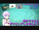 【 Fifth Hijiki Festival 】 Would you like to dive with Yukari? Part 11 【 Amami 】