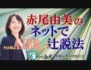 『第30回グローバル化・共産化反対!(前半)』赤尾由美 AJER2019.8.28(3)