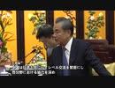 王毅外交部長、野田聖子氏ら日本の議員団と会見