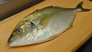 寿司職人によるシマアジの仕込みから握りまで〜How To Make yellow jack Sushi〜