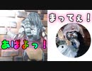 あゆみちゃん#6 捨てないで