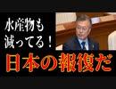 麗しき和の世界情勢  水産物減少も日本の報復だ!20190831