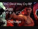PS4 DmC Devil May Cry BP サキュバス No Damage