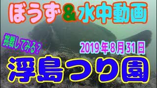 ぼうず&水中動画(2019年8月31日)in 浮