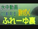 水中動画(2019年9月1日)in ふれーゆ裏