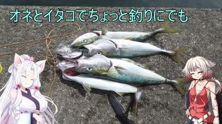 【岸和田一文字】ONEとイタコとちょっと釣りにでも。3回目【VOICeVIフィッシング】