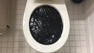 スライムをトイレに流してみた8