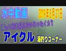 水中動画(2019年8月27日)in アイクル 海釣りコーナー
