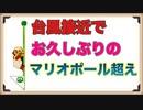 【台風直撃!!!】スーパーマリオポール越えをぱんださんが全力でやってみた!#15