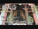 奈良の東大寺!大仏や御朱印など見どころを観光してきました!