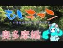 【ソロキャン】むしキャン 奥多摩編1【ゆっくり】
