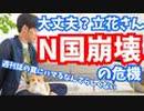 N国崩壊の危機【立花さんの戦略ミス】を解説〜週刊誌にハメられるなんてらしくない