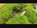 千葉の野池でバスフィッシング!