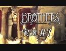【実況】兄弟の命運を分ける私の同時コントロール #7【ブラ...