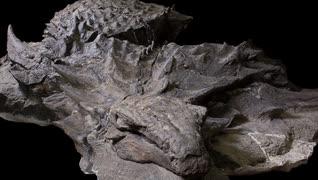 ゆっくりがもっと恐竜を解説すんよ~ 第五回:ノドサウルス類