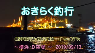 【横浜・D突堤】 おきらく釣行 【2019091