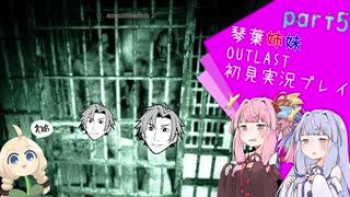 【OUTLAST】琴葉葵の精神病院サバイバル!