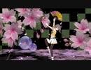 【夏色まつり】千本桜
