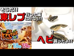 【東レプ2019】そうだ!!東レプに行こう!!実際に行った【爬虫類イベント】
