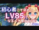 【PSO2】初心者講座レベリング編①「まず目標はLV85!」【オリキャラでVOICEROID解説】