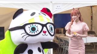 「チャイナフェスティバル2019」が東京で開催、文化交流を強化