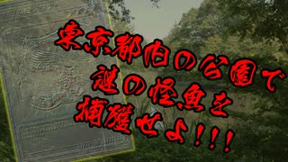 謎の怪魚を都内の公園で捕獲せよ!!!