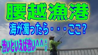 釣り動画ロマンを求めて 290釣目(腰越漁