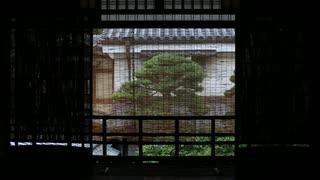 初秋の京都(2019/9/22)