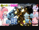 金ハロとゆかりのバトオペ2#009【ガンダムLv3ハンマー装備】