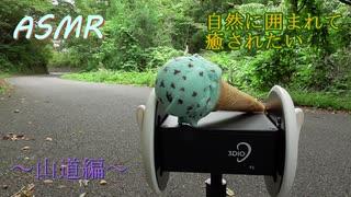 【ASMR】自然の中でステンレス製耳かき【立体音響】