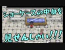 【縛り実況】ツチノコが往く!ポケットモンスターX part9