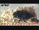 5000匹のケアリvs切断されてないマダガスカルゴキブリ~アリ...