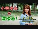 「決算審議について(前半)」小林ゆみ  AJER2019.10.11(1)